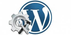 wordpress plugin SEO
